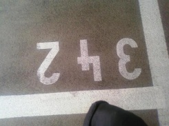 342 by 3triplex