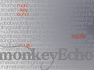 monkeyEcho-words