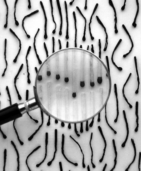 burnt matches in black and white Alexey Menschikov 18