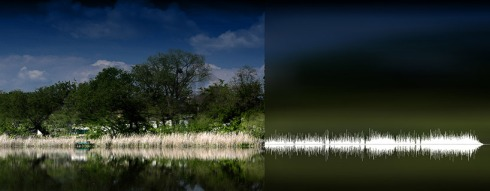 anna marinenko nature sound waves 6