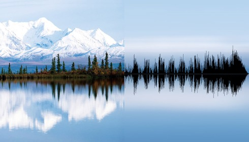 anna marinenko nature sound waves